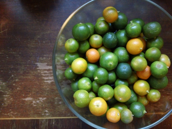 My favorite market find: calamansi limes. Can't get these babies at Safeway!