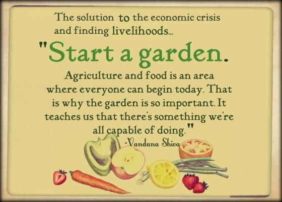 start a garden.